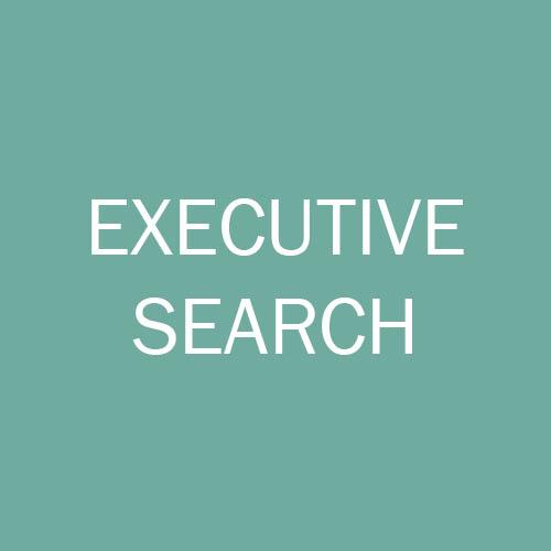 Exec search button.jpg