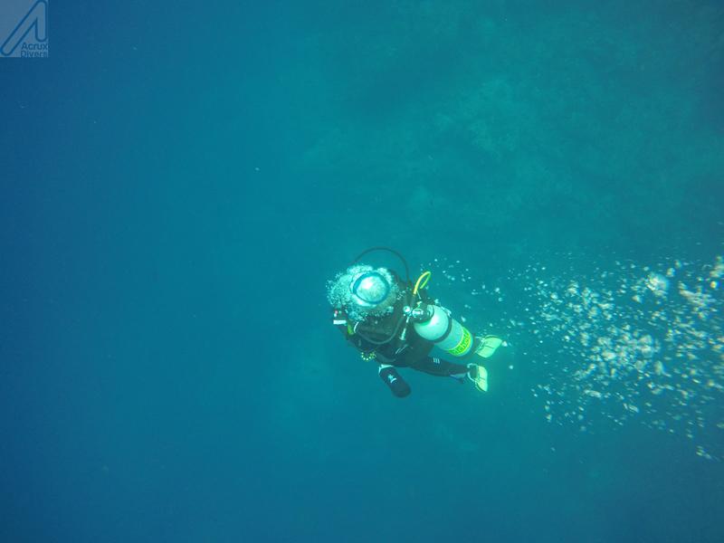 Buble diver_ Coco Island