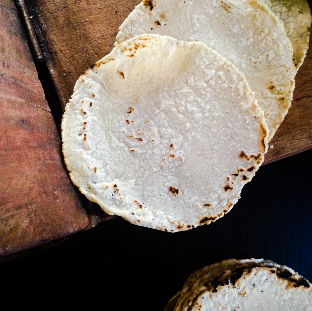 corn tortillas adriana guillen