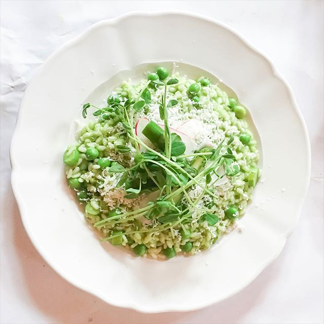 Spring Risotto  #amdv #risotto #vegetarianfood #vegetariana #youtuber #lafayettegrandcafe