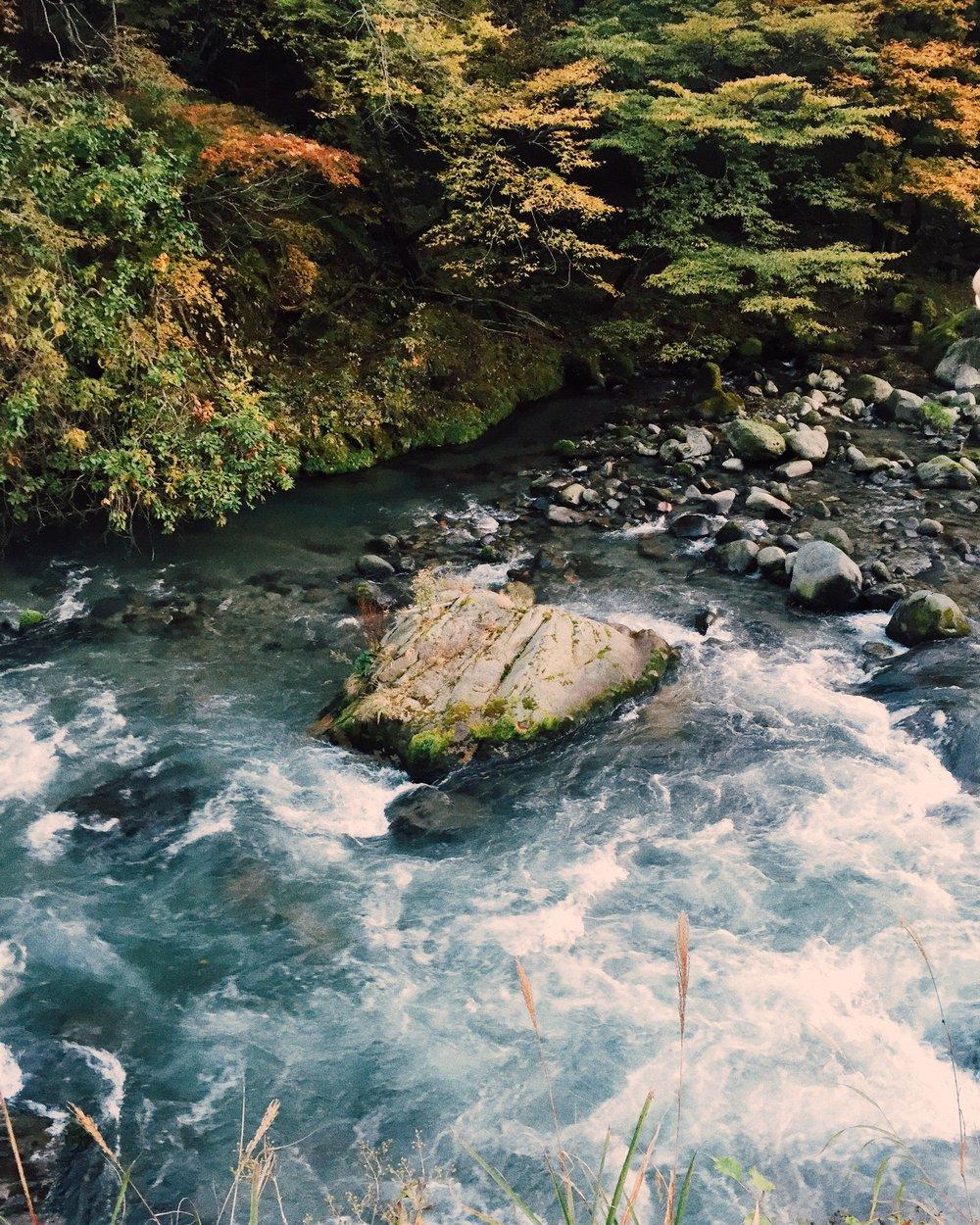 Nikko, Autumn 2014.