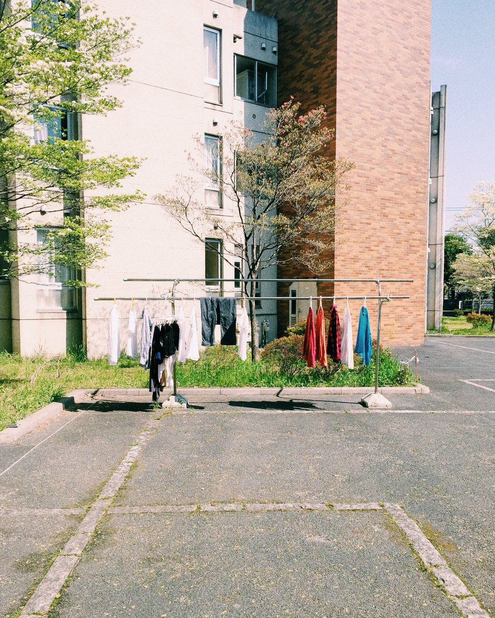 Mitaka International Hall of Residence, Spring 2015.