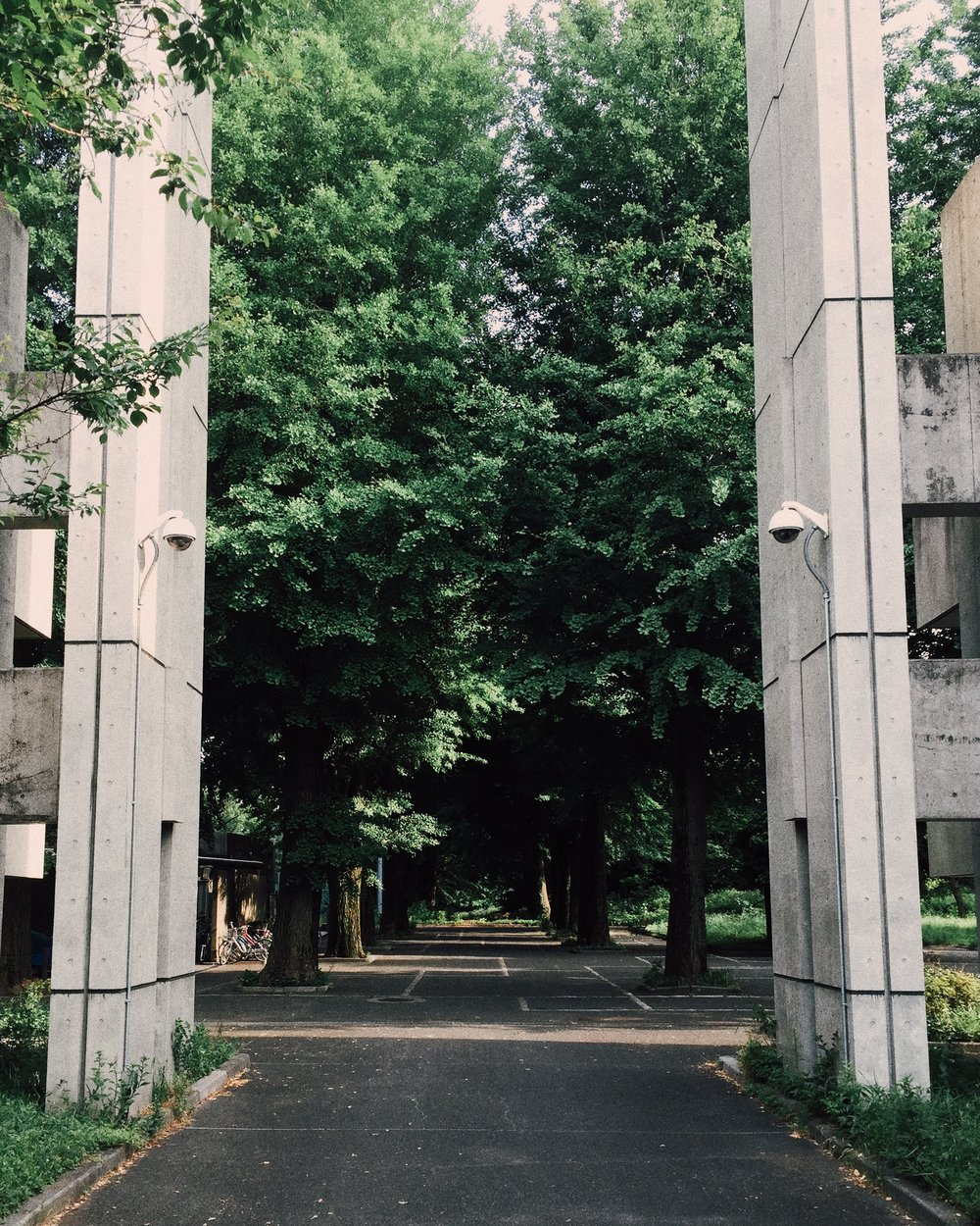 Mitaka International Hall of Residence, Summer 2015.