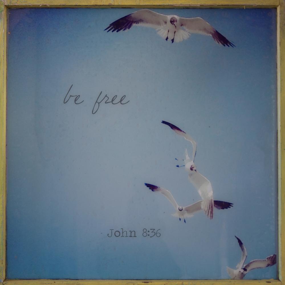 Befree-BluWyattGoebler.jpg