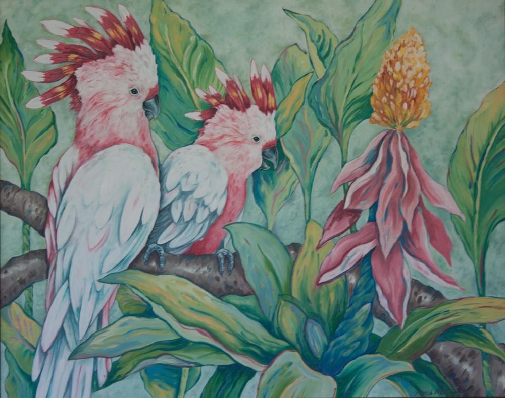 Mitchell's Cockatoo- Mattingly.jpg