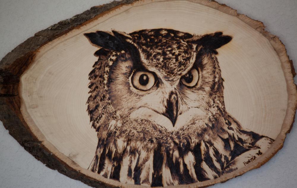 Pyrography Owl-casey.jpg
