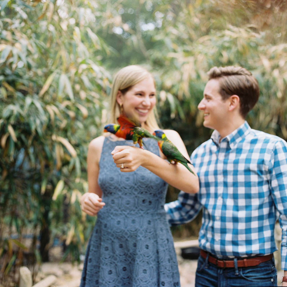 nashville zoo engagement session natural documentary day in the life photographer ©2016abigailbobophotography-5.jpg