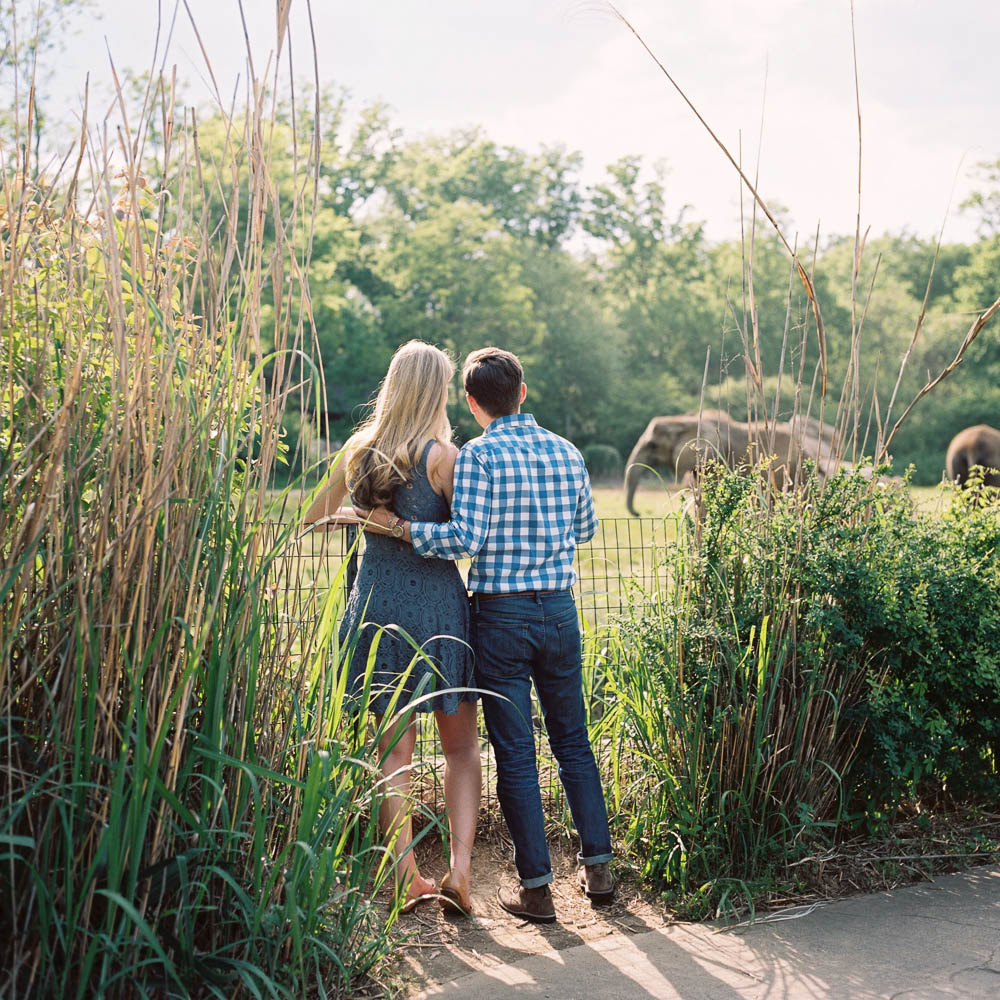 nashville zoo engagement session natural documentary day in the life photographer ©2016abigailbobophotography-6.jpg