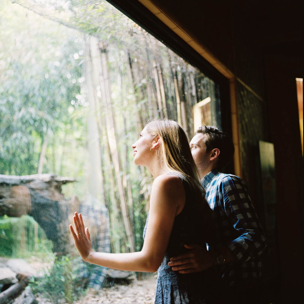 nashville zoo engagement session natural documentary day in the life photographer ©2016abigailbobophotography-16.jpg