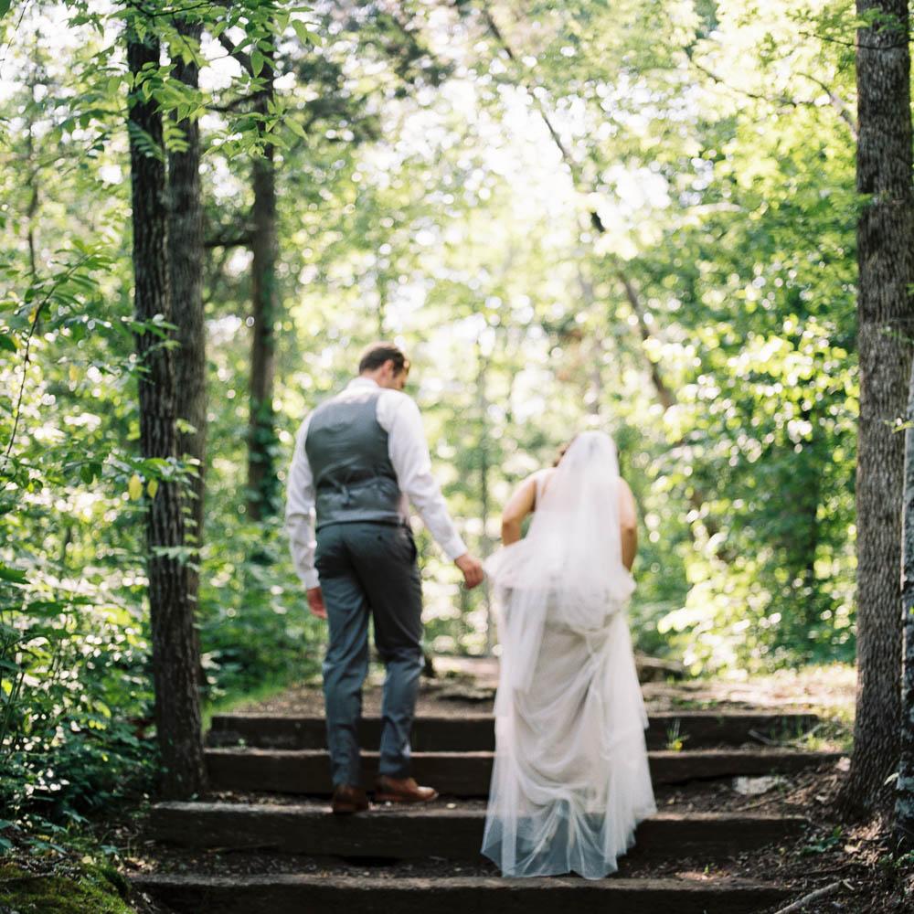 wrens nest documentary natural film wedding photographers ©2016abigailbobophotography-13.jpg