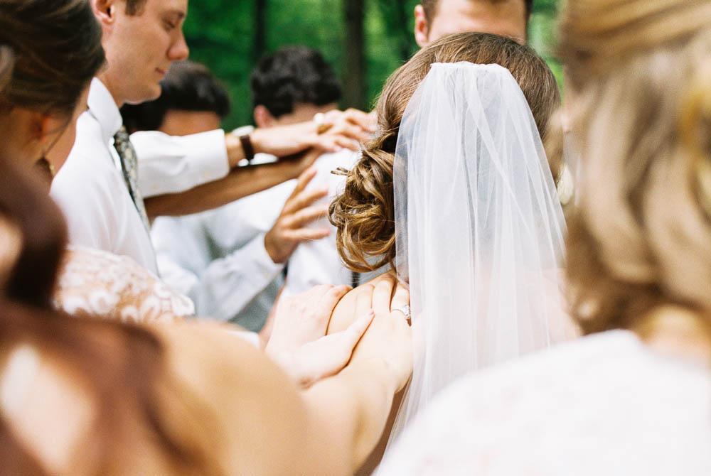 wrens nest documentary natural film wedding photographers ©2016abigailbobophotography-42.jpg
