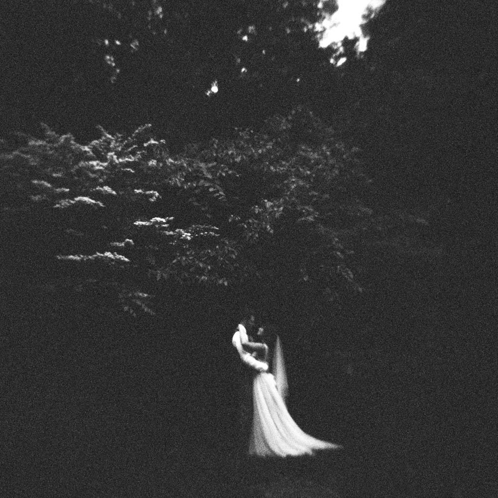wrens nest documentary natural film wedding photographers ©2016abigailbobophotography-47.jpg