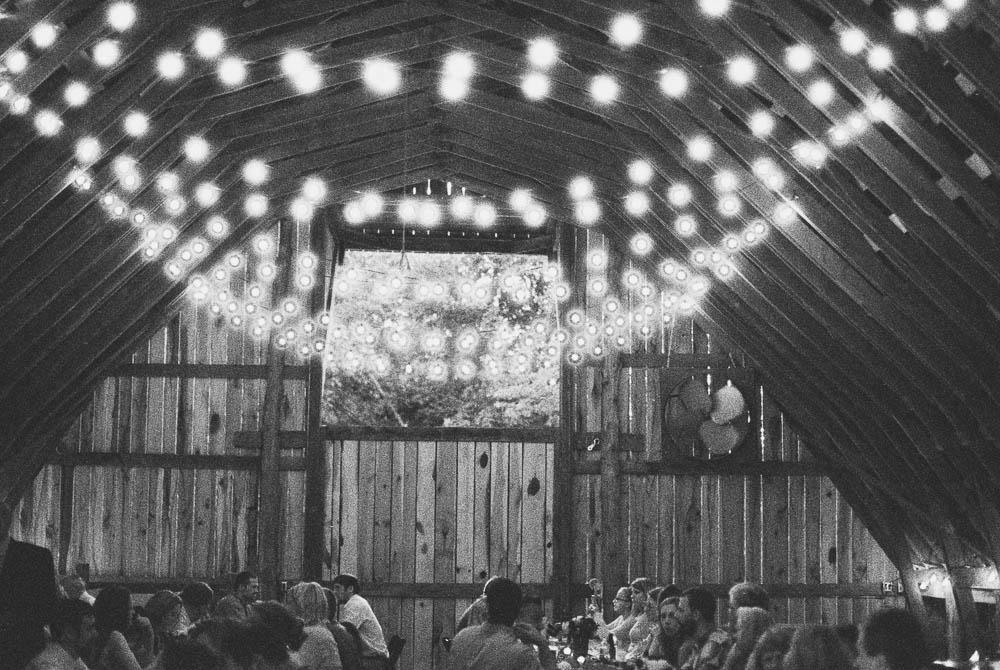 wrens nest documentary natural film wedding photographers ©2016abigailbobophotography-50.jpg