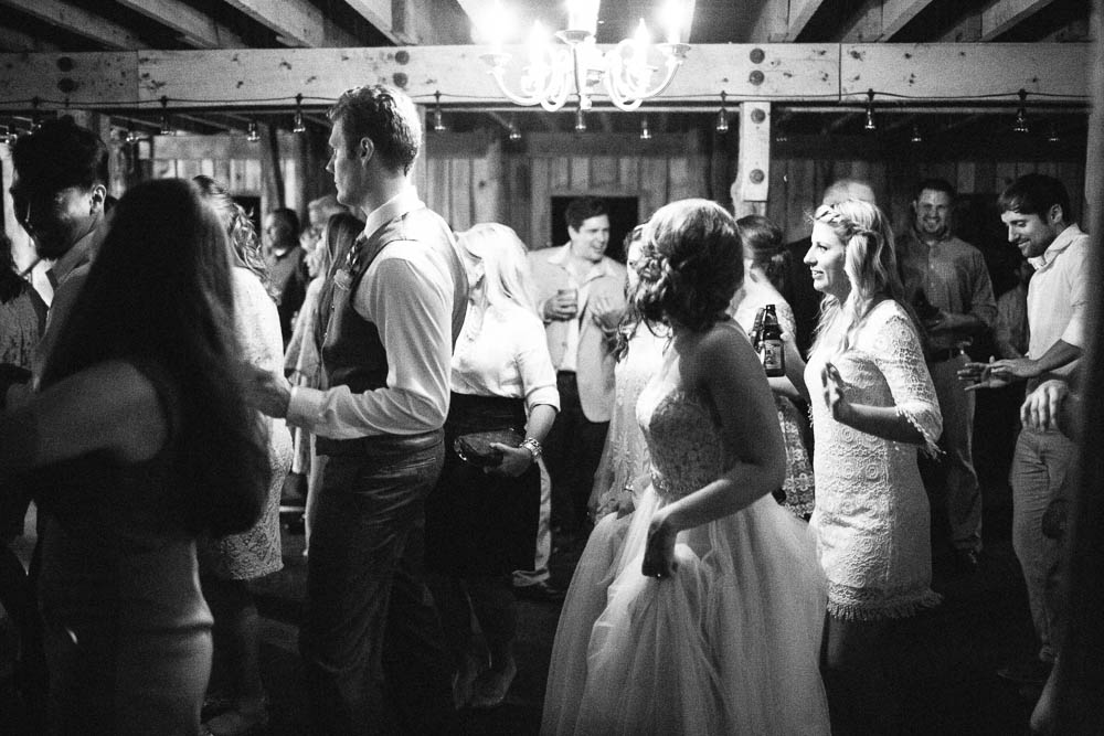 wrens nest documentary natural film wedding photographers ©2016abigailbobophotography-62.jpg