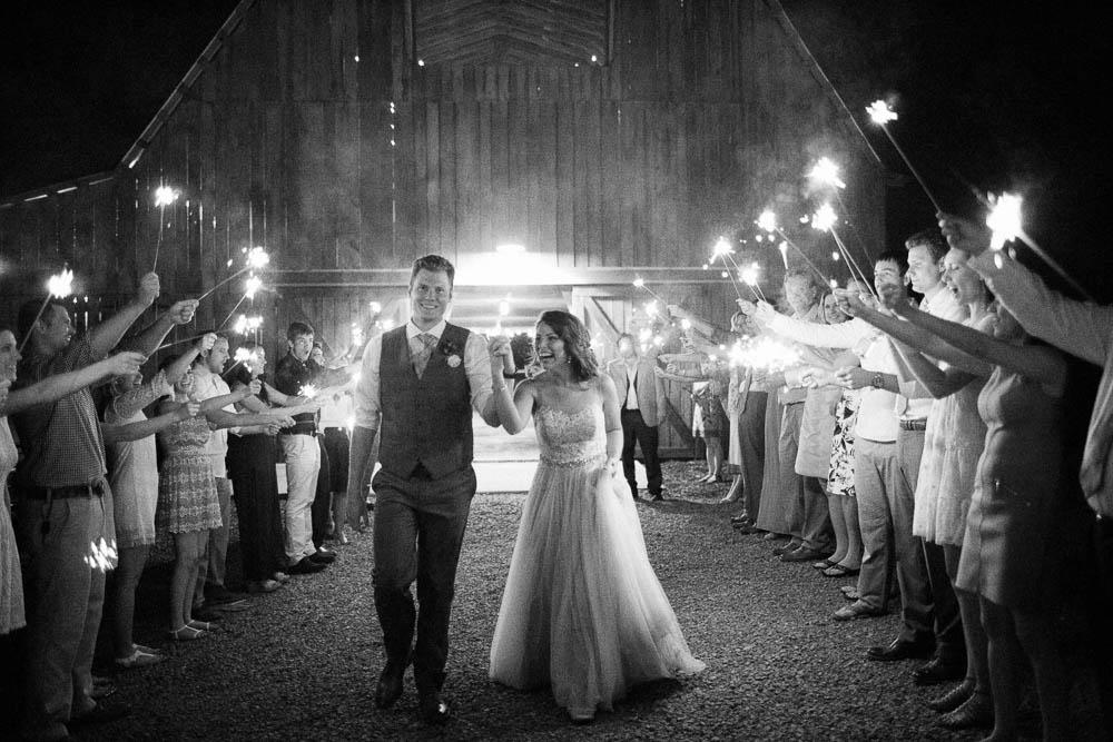 wrens nest documentary natural film wedding photographers ©2016abigailbobophotography-67.jpg