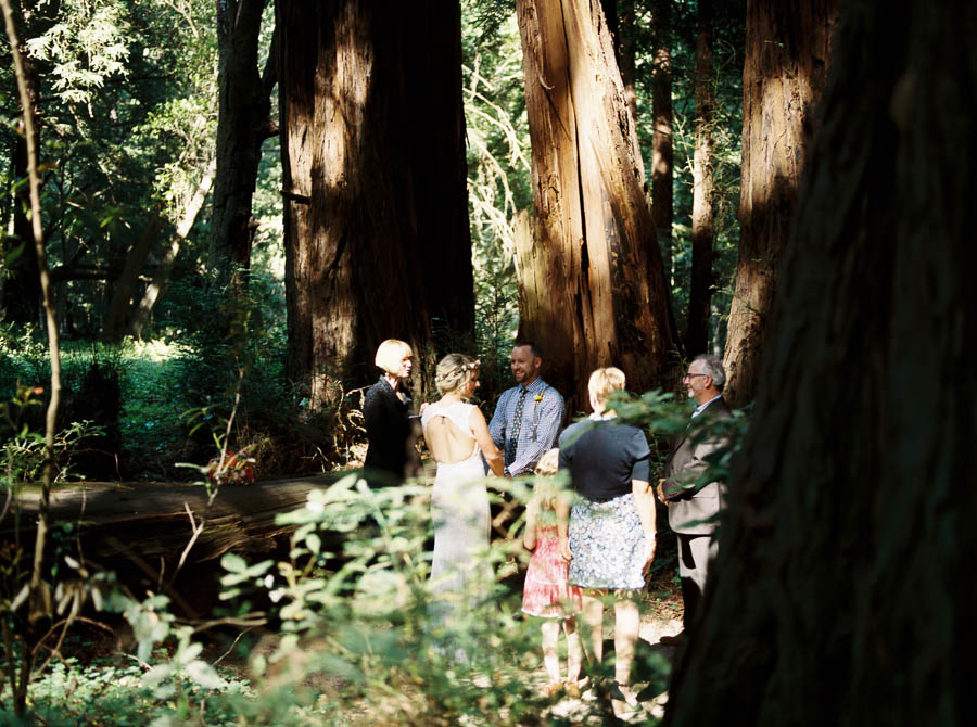 redwoods big sur film elopement photographers ©2016abigailbobophotography-23.jpg