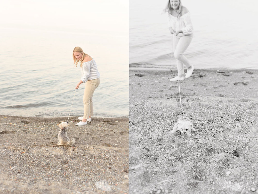 Fun family photography of girl bringing morkie dog into Lake Ontario