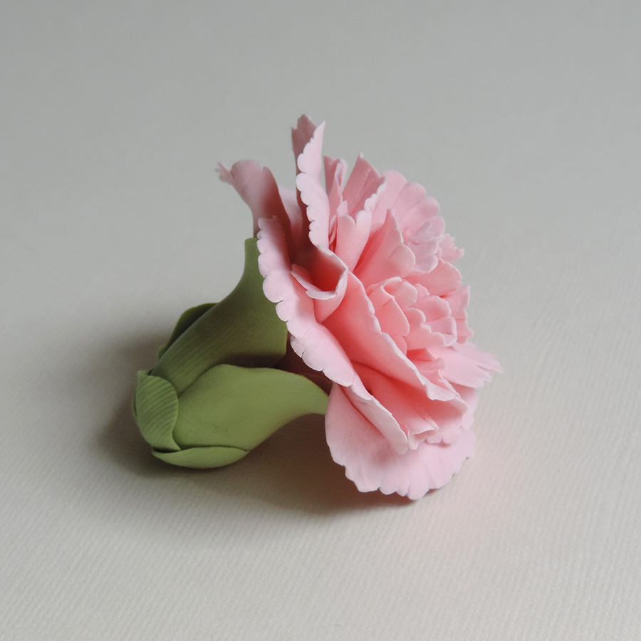 carnation_02.jpg