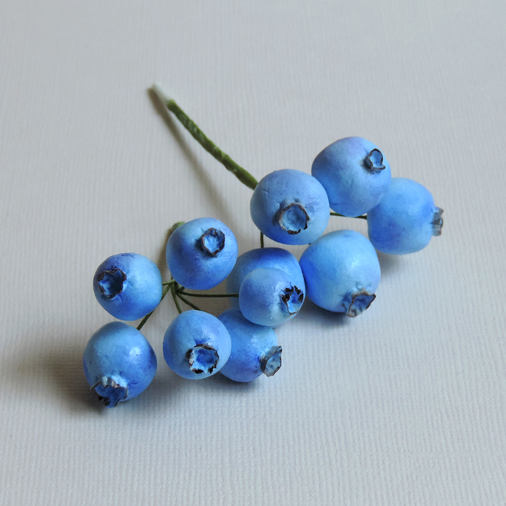 blueberries_01.jpg