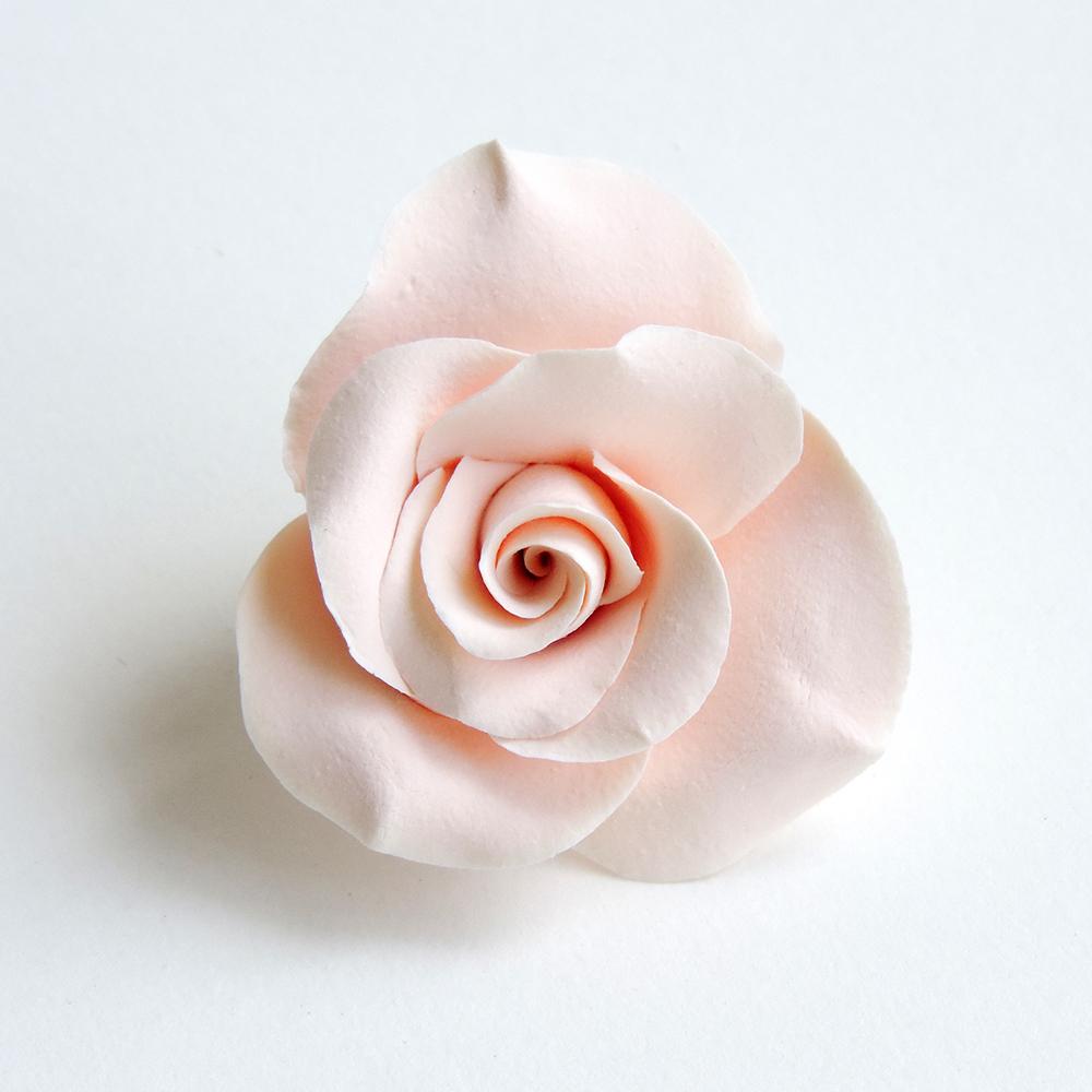 Rose_01.jpg