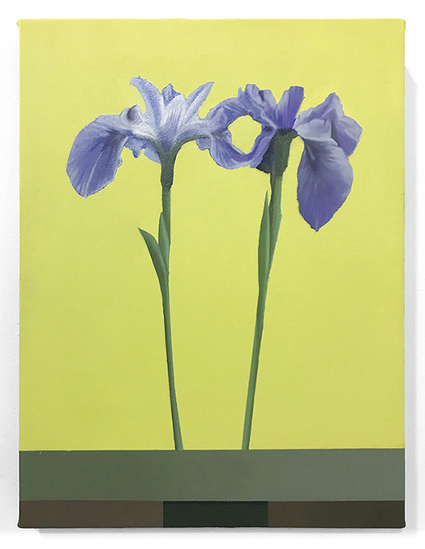 Sarah Pater, Iris Versicolor, 12 x 16 in, oil and wax over acrylic on linen