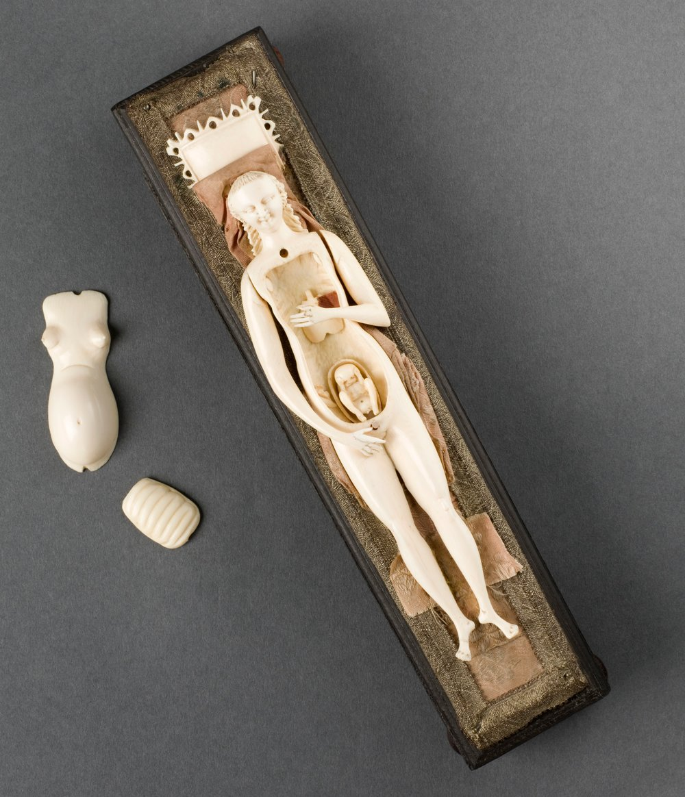 Anatomical figure of a pregnant woman, Europe, 1701-1800  |  Science Museum, London