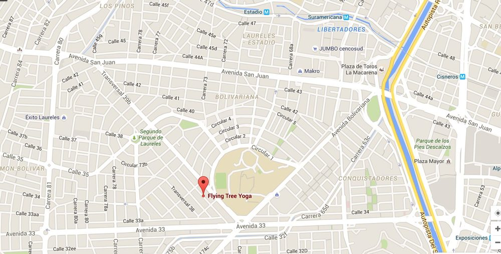 Flying Tree yoga studio yoga classes in English map
