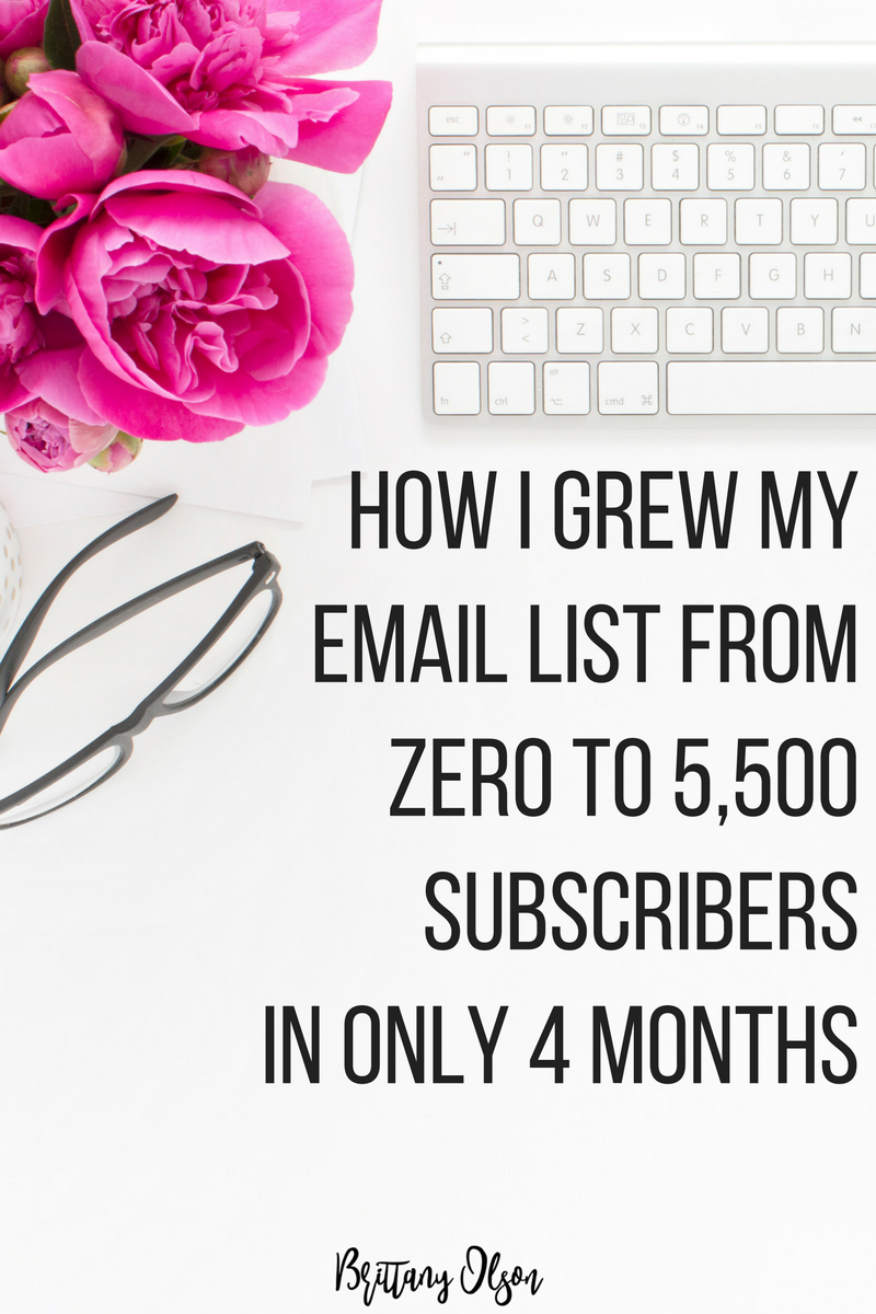 How To Grow Your Email List From Scratch - I Grew My Email Subscribers From 0 to 5500 In 4 Months