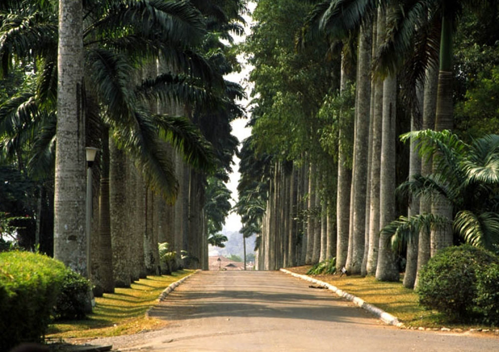 Abrui Botanical Gardens: Photo credit: Touring Ghana