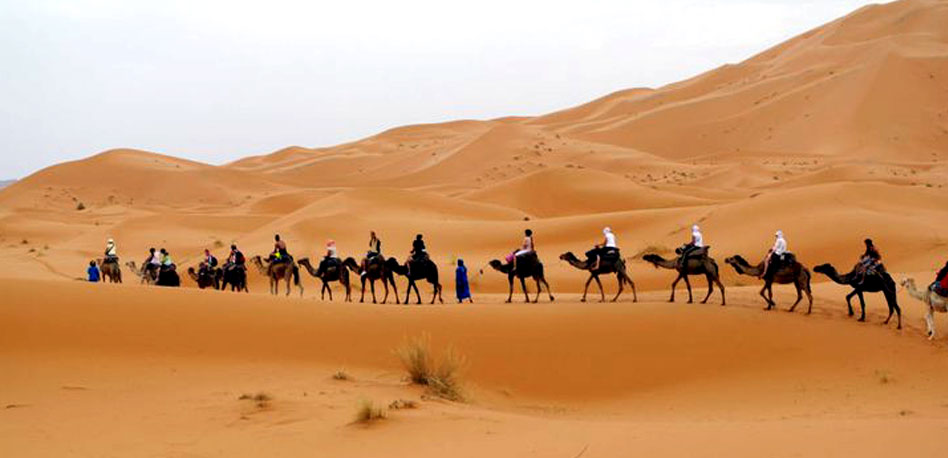 The Sahara Desert. Photo Credit:  The Sahara Desert Tour