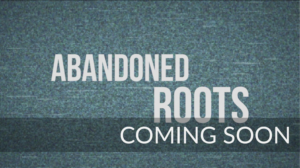 Abandoned roots.jpg