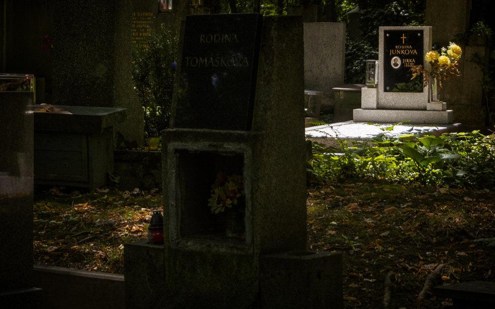 Skogskyrkogård