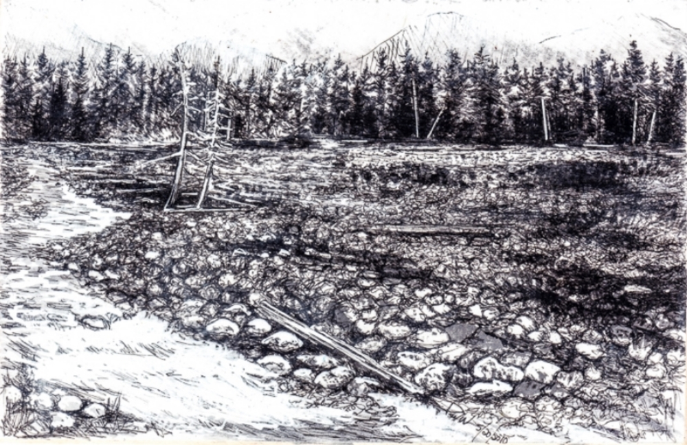 "Mt Rainier Riverbed, 2009 4"" x 6"""