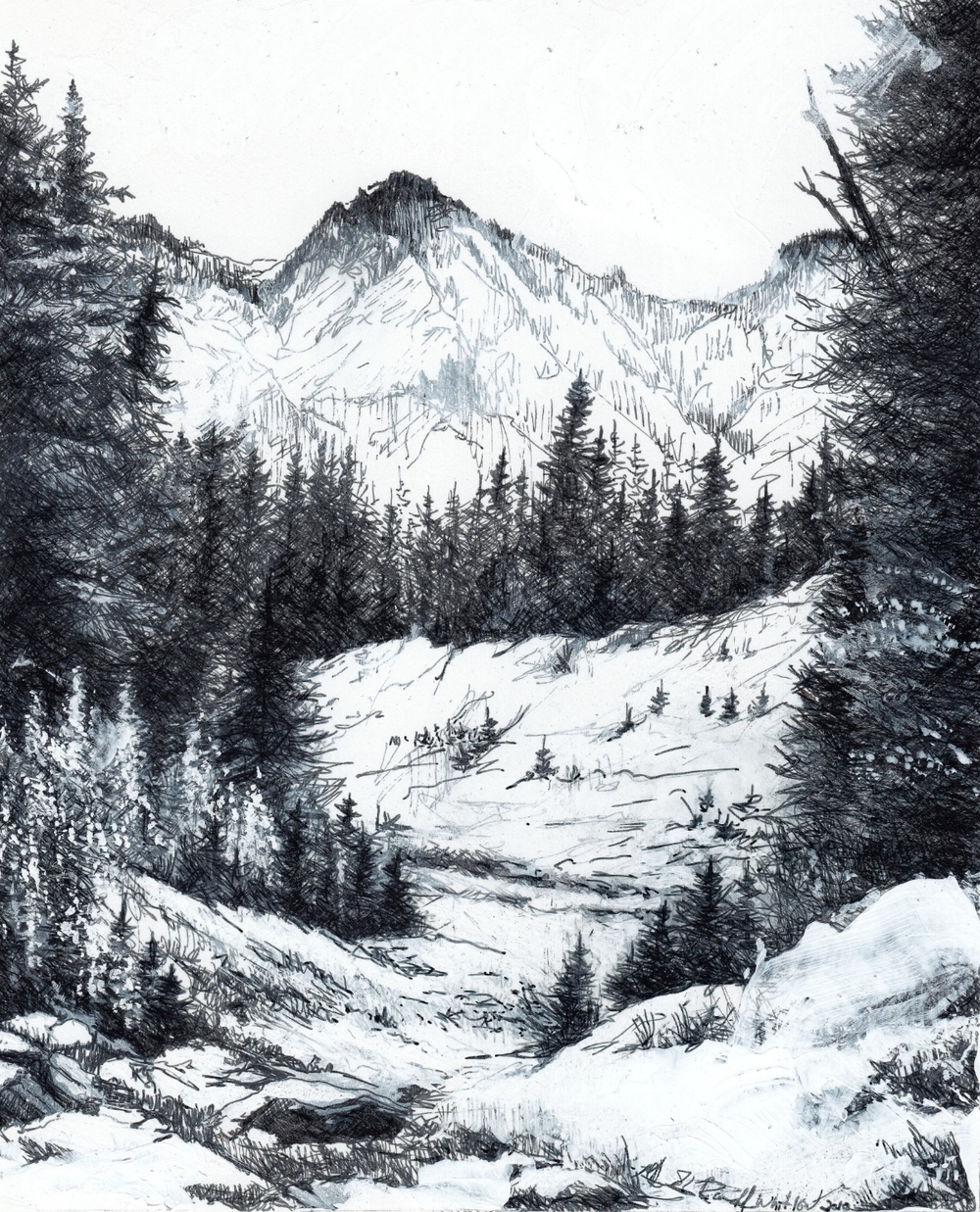 "Mt Rainier Vista, 2009 8"" x 10"""