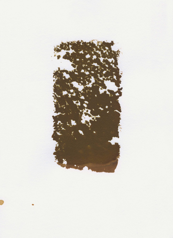 Untitled (sponge)