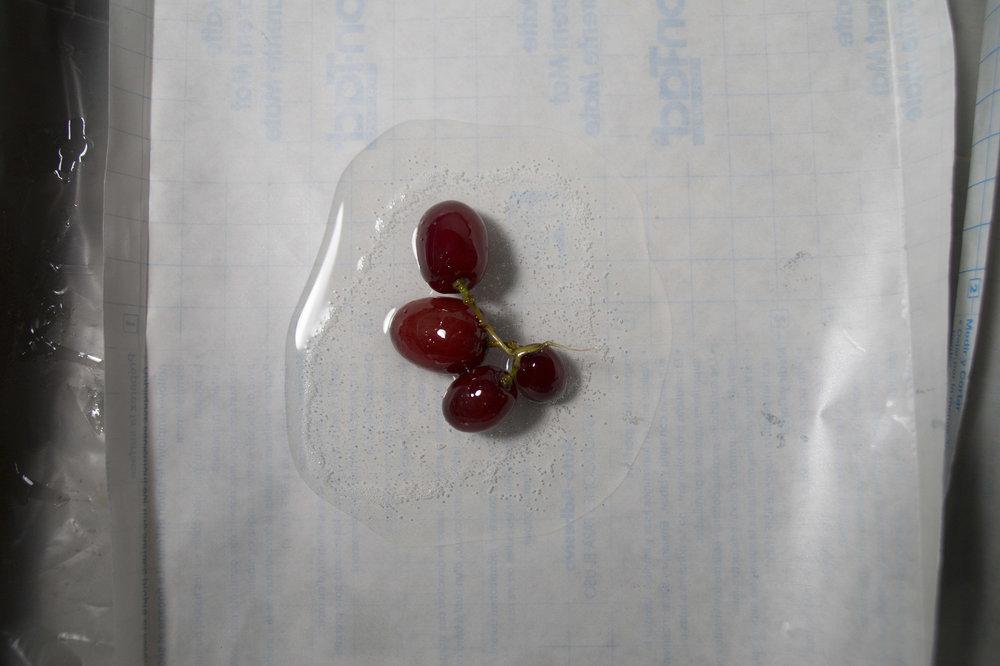 grape1stage1top.jpg