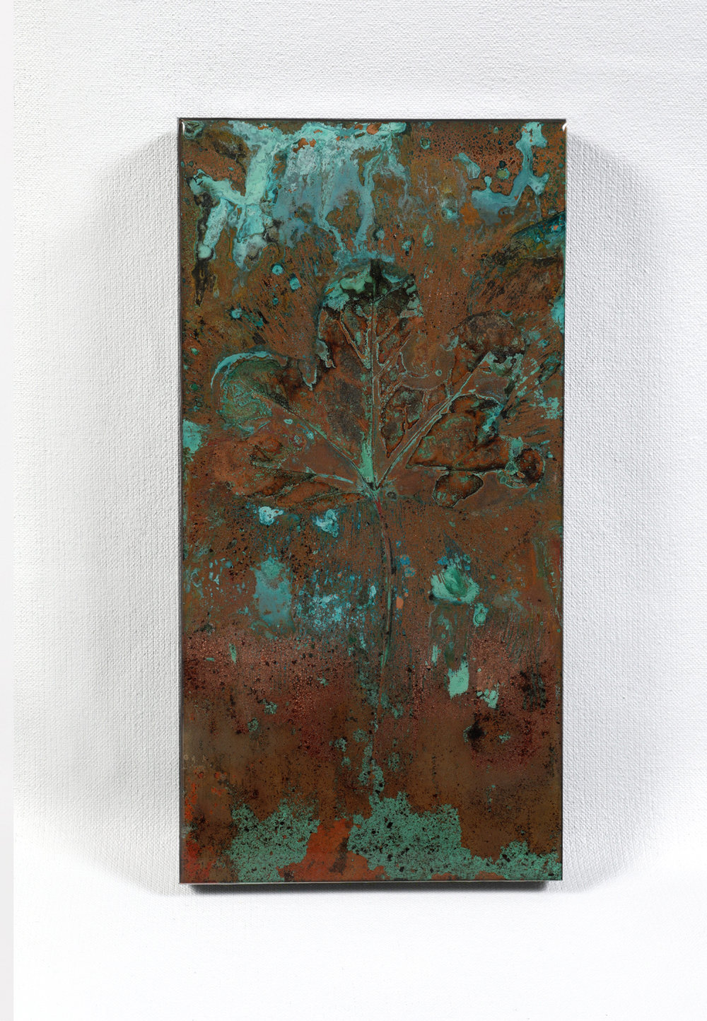 "Quericus #640 | Abstract verdigris on copper | 6"" x 12"""