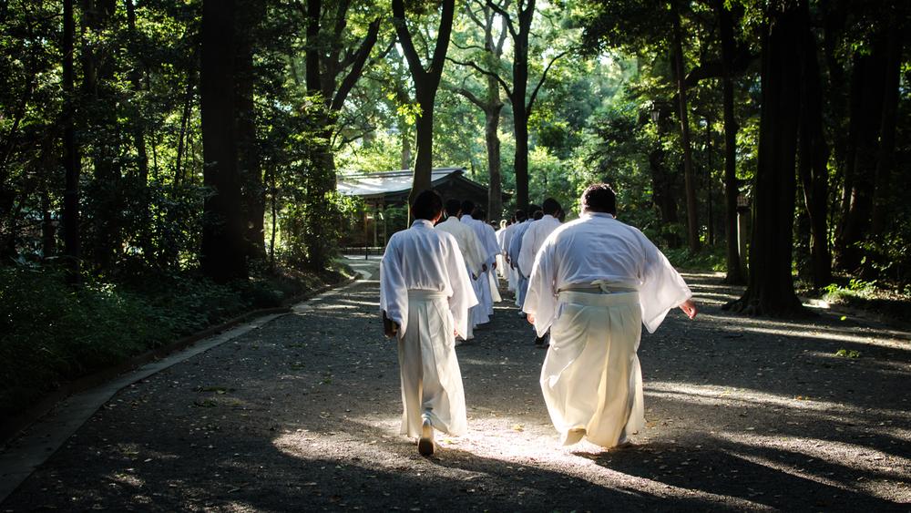 Meiji Shrine, Tokyo, 14/7/2015 5:06:16