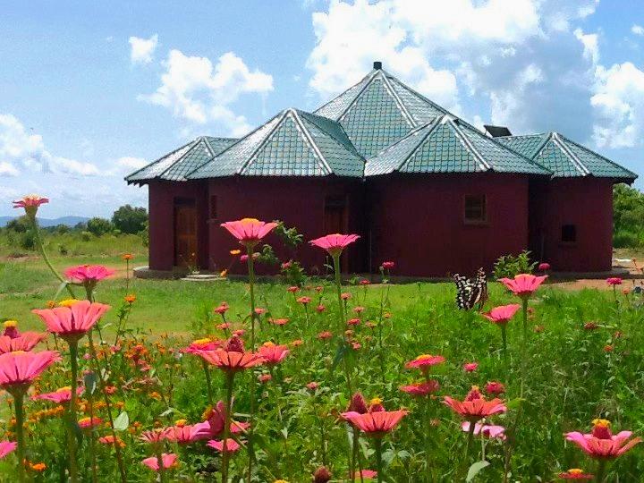 Birth Centers - Casas de Parto