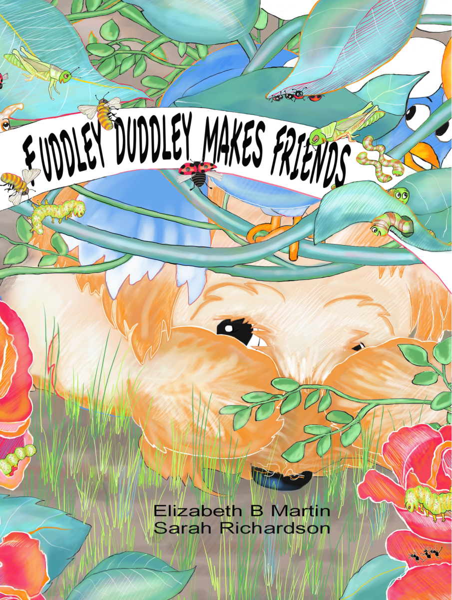 Elizabeth Martin Fuddley Duddley Cover