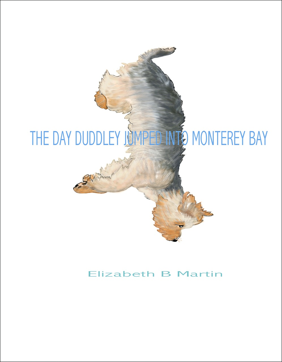 Elizabeth Martin Duddley Monterey Bay After Cover