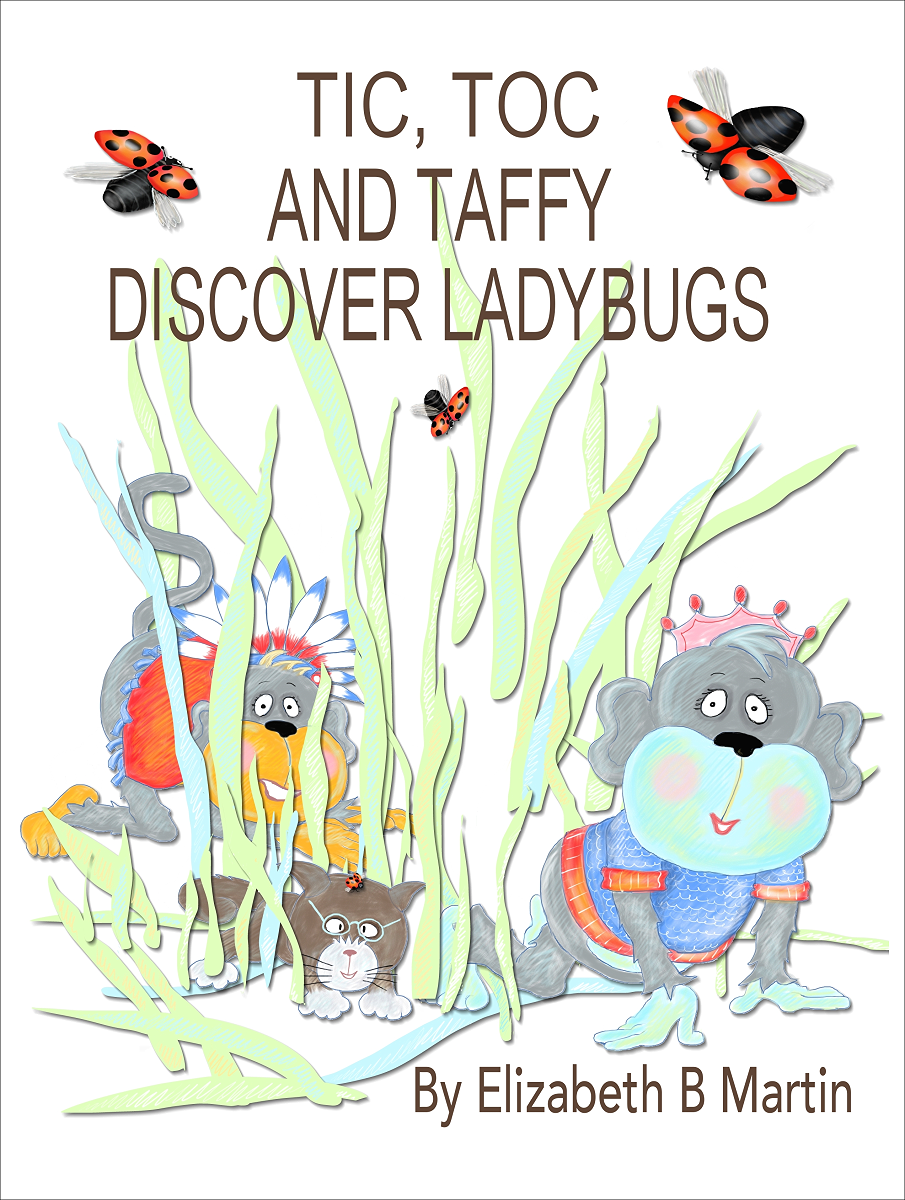 tic_toc_and_taffy_discover_ladybugs.png