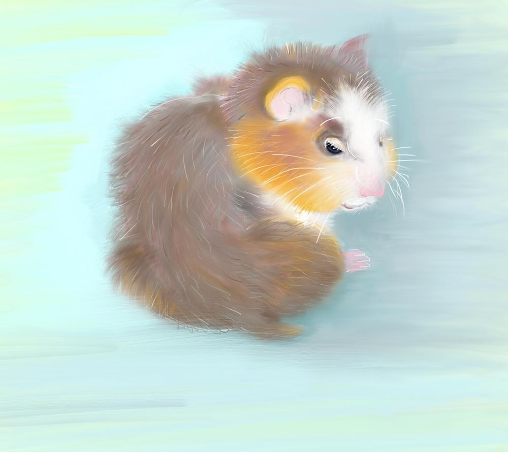 Hamster Study by Elizabeth B Martin