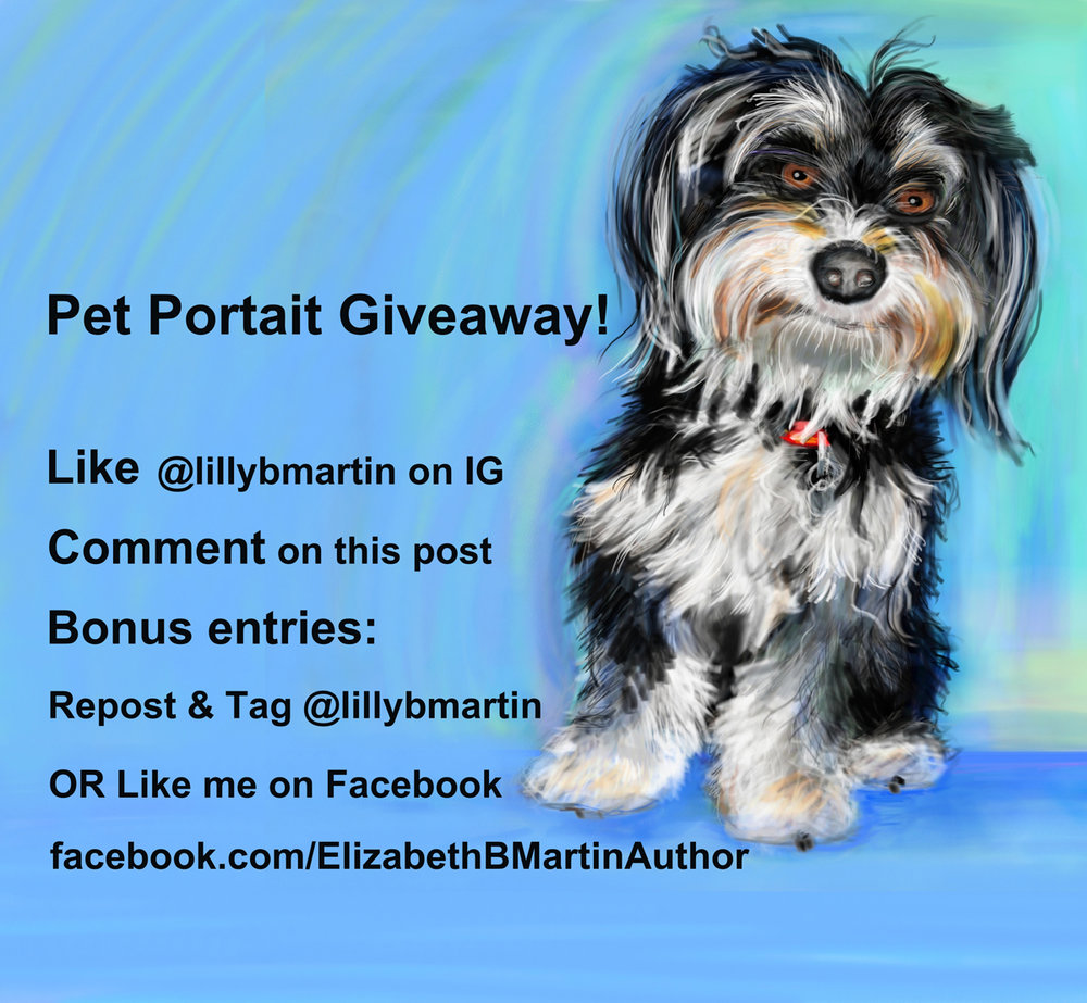 Enter to win a pet portrait on my Instagram page!