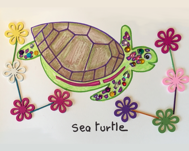 Sea Turtle Art and Craft