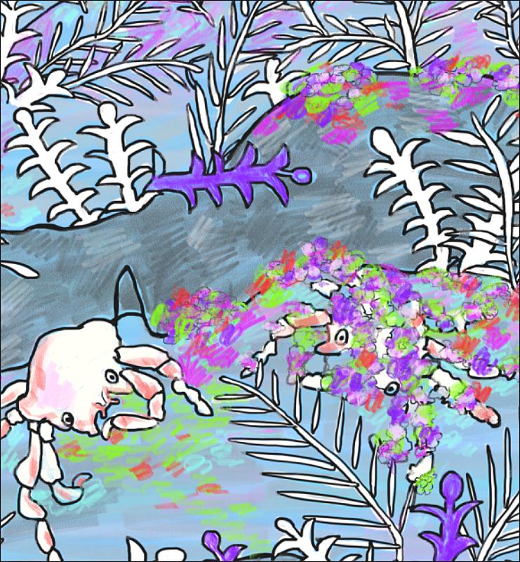 elizabeth_martin_decorator_crab_detail.png