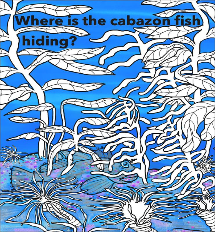 elizabeth_martin_cabazon_fish.png