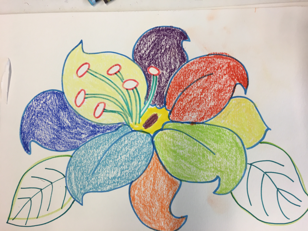 Flowers and Butterflies 10 – Before