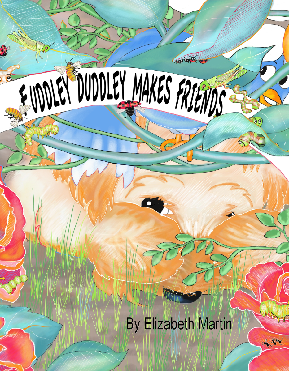 Cover of the picture book, Fuddley Duddley Makes Friends, by Elizabeth B Martin