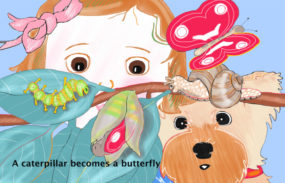 Fuddley Duddley watches a caterpillar become a butterfly